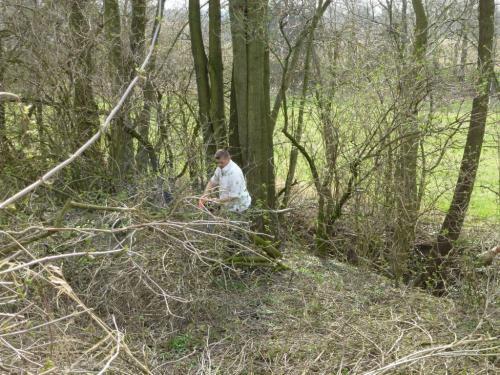 Jarní údržba zeleně