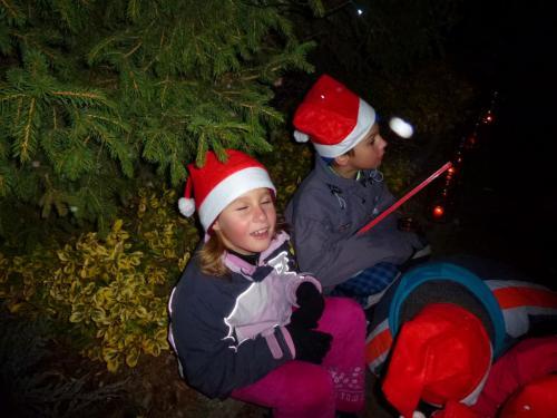 Rozsvícení vánočního stromu 28.11.2015